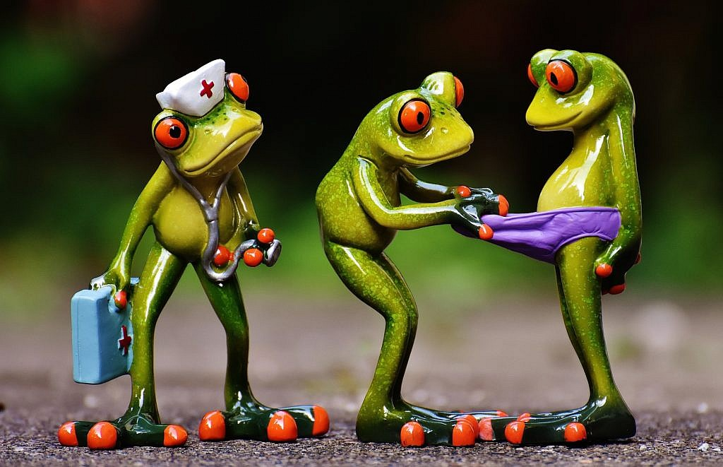 frogs-1672890_1920